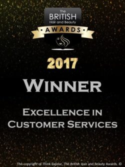 2017 winner - excellence in customer services